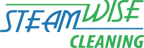 Steam Wise Cleaning